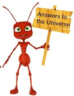 teacher ant