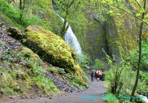 nature hike sm