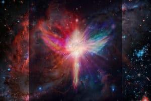 ascension love