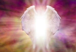 angel wings pink (1)