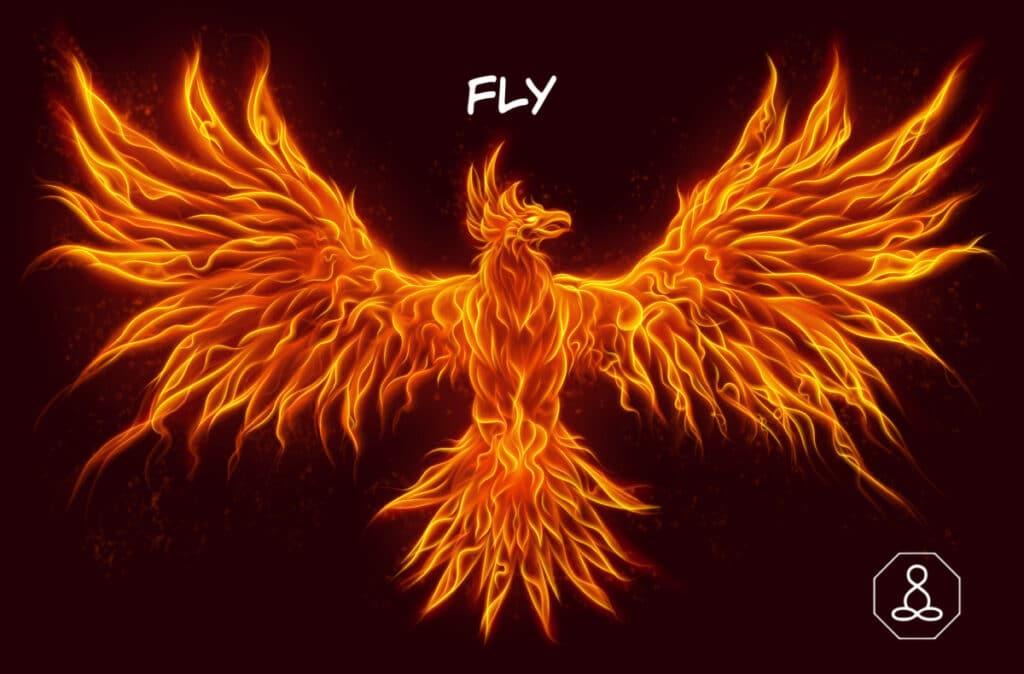 phoenix fly lindsaygodfree