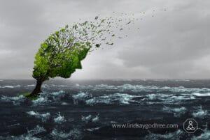 change winds (2)
